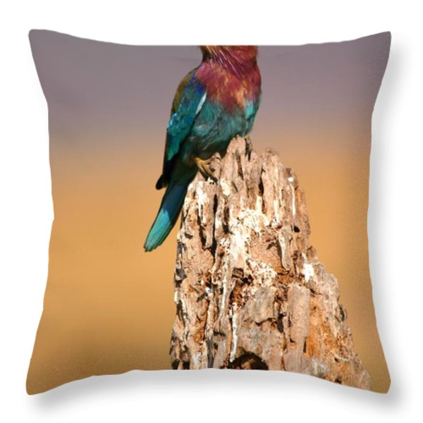 Close View Of A Lilac-breasted Roller Throw Pillow by Roy Toft