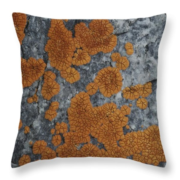Close View Of Orange Lichen Growing Throw Pillow by Stephen Sharnoff