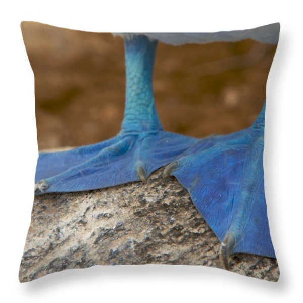 Close View Of The Feet Of A Blue-footed Throw Pillow by Tim Laman
