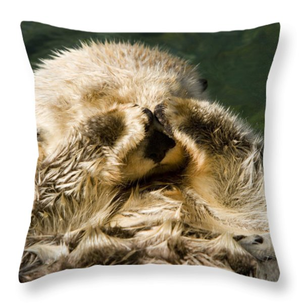 Closeup Of A Captive Sea Otter Covering Throw Pillow by Tim Laman
