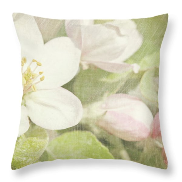 Closeup of apple blossoms in early Throw Pillow by Sandra Cunningham