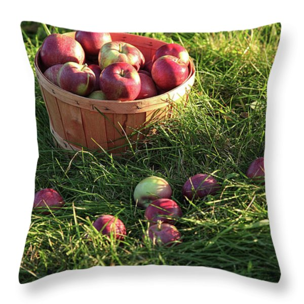 Closeup Of Freshly Picked Apples Throw Pillow by Sandra Cunningham
