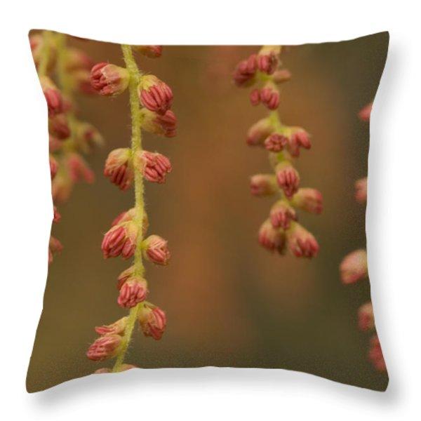 Closeup Of Pollen Tendrils Hanging Throw Pillow by Phil Schermeister