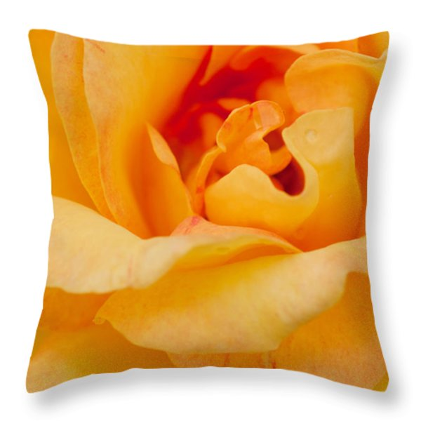 Closeup Yellow Rose Throw Pillow by Atiketta Sangasaeng