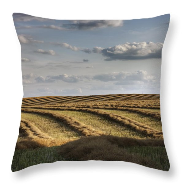 Clouds Over Canola Field On Farm Throw Pillow by Dan Jurak