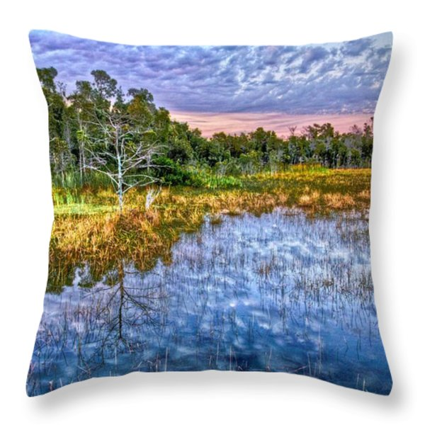 Clouds Underwater Throw Pillow by Debra and Dave Vanderlaan
