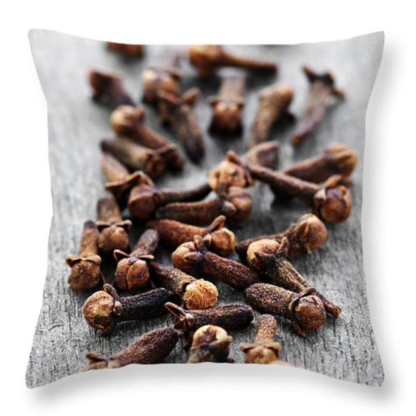 Cloves Throw Pillow by Elena Elisseeva