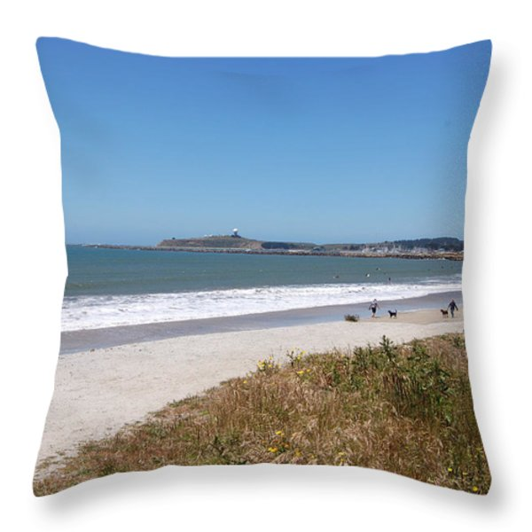 Coastside California Throw Pillow by Carolyn Donnell