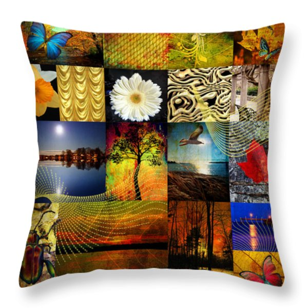 Collage Of Colors Throw Pillow by Mark Ashkenazi