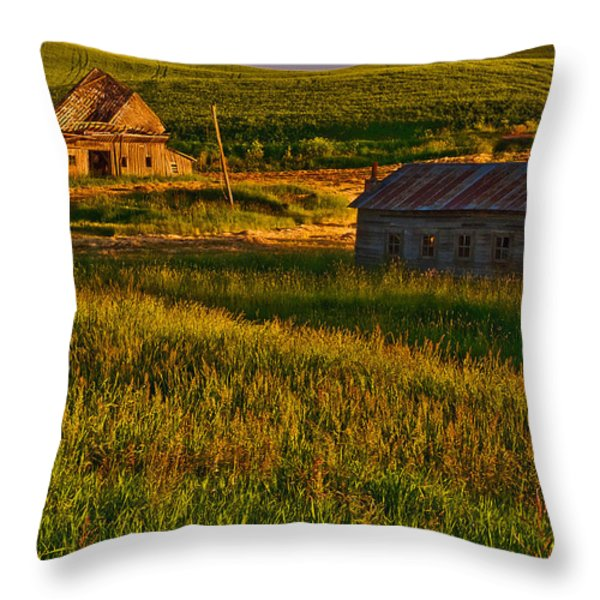 Collapsed Throw Pillow by Dan Mihai