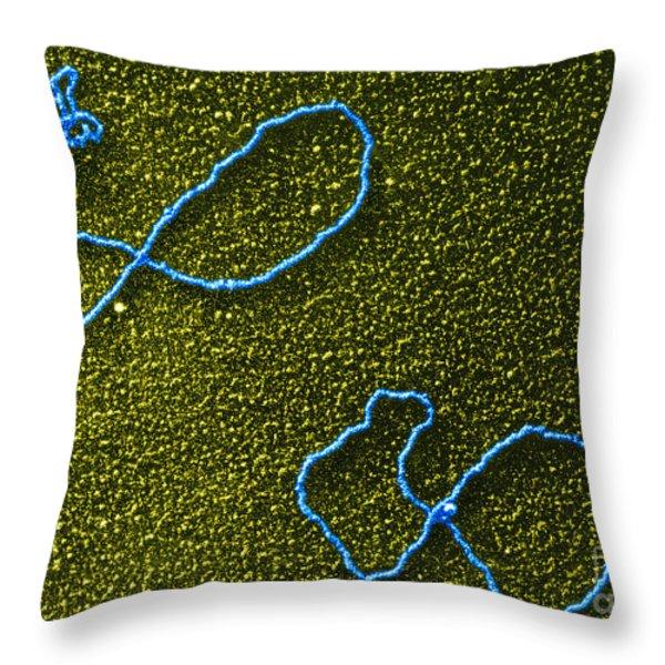 Color Enhanced Tems Of Kleinschmidt Throw Pillow by Omikron