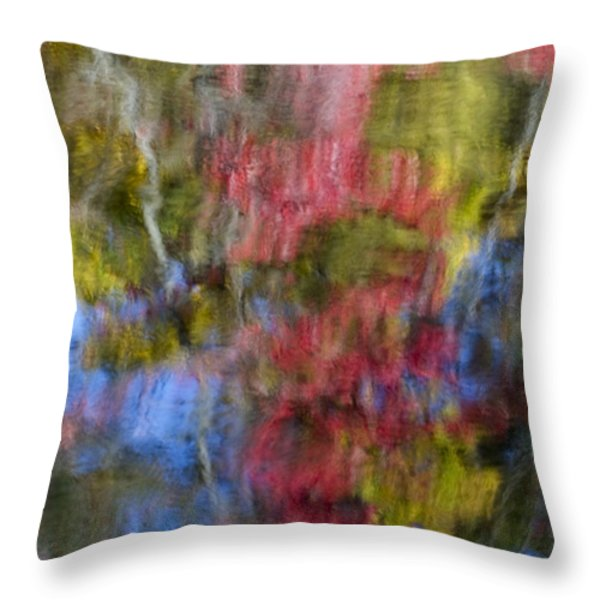 Color Palette Throw Pillow by Susan Candelario