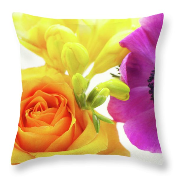 Colored Throw Pillow by Angela Doelling AD DESIGN Photo and PhotoArt