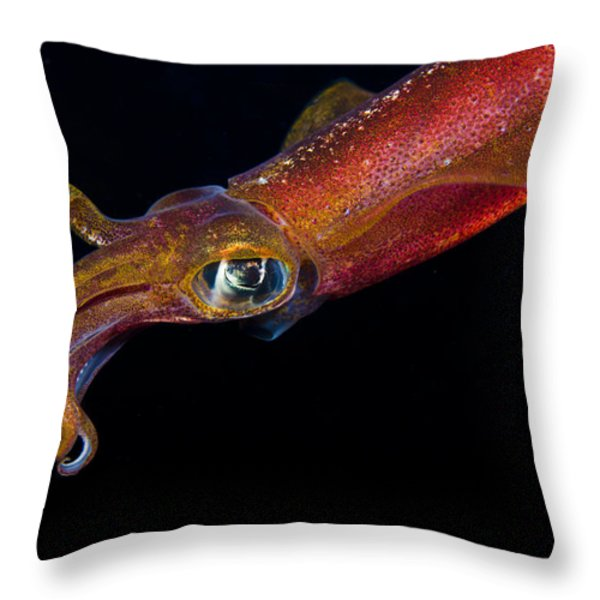 Colorful Oval Squid Throw Pillow by Dave Fleetham - Printscapes