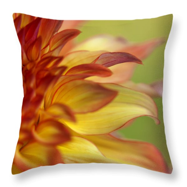 Colors Of A Summer Sunset Throw Pillow by Reflective Moment Photography And Digital Art Images