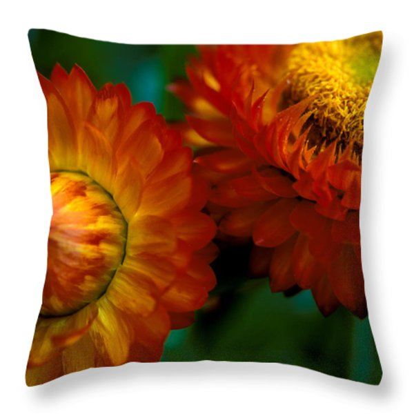 Colors Of Fall Throw Pillow by Kathy Yates