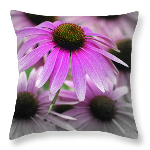Coneflowers Throw Pillow by Marty Koch