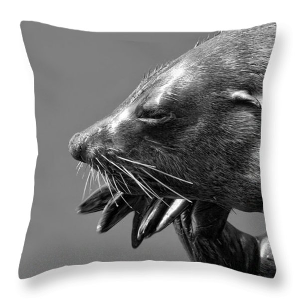Content Contemplation Throw Pillow by Andrew  Hewett