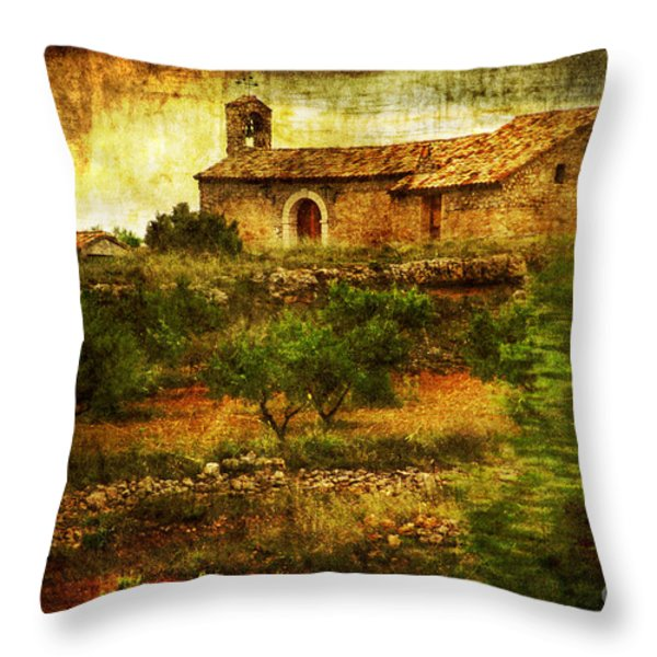 Continuance Throw Pillow by Andrew Paranavitana