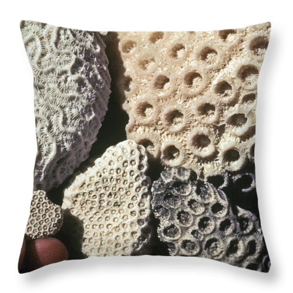 Coral Cobbles On Beach Of Bonaire Throw Pillow by Greg Dimijian