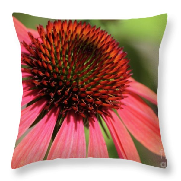 Coral Cone Flower Too Throw Pillow by Sabrina L Ryan