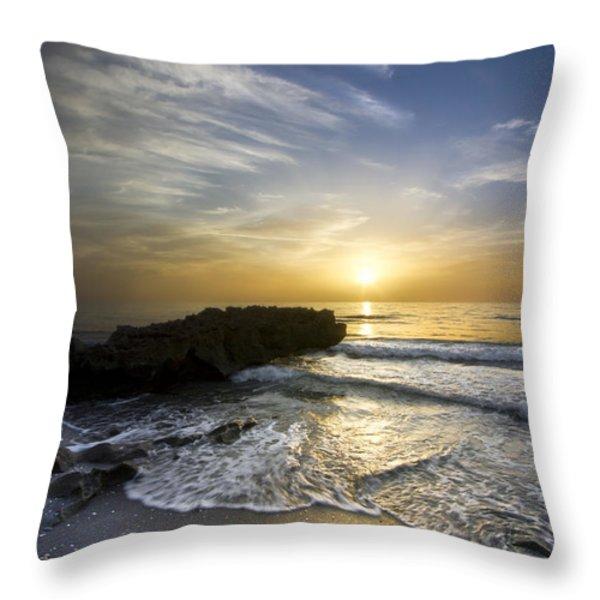 Coral Shoreline Throw Pillow by Debra and Dave Vanderlaan