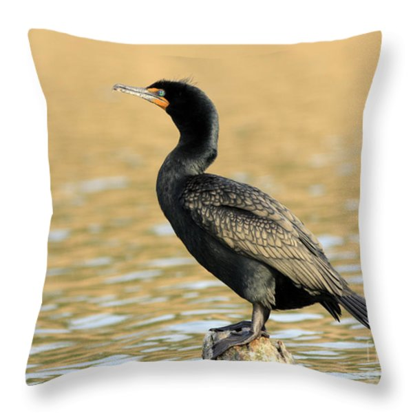 Cormorant At Sunset Throw Pillow by Inspired Nature Photography Fine Art Photography