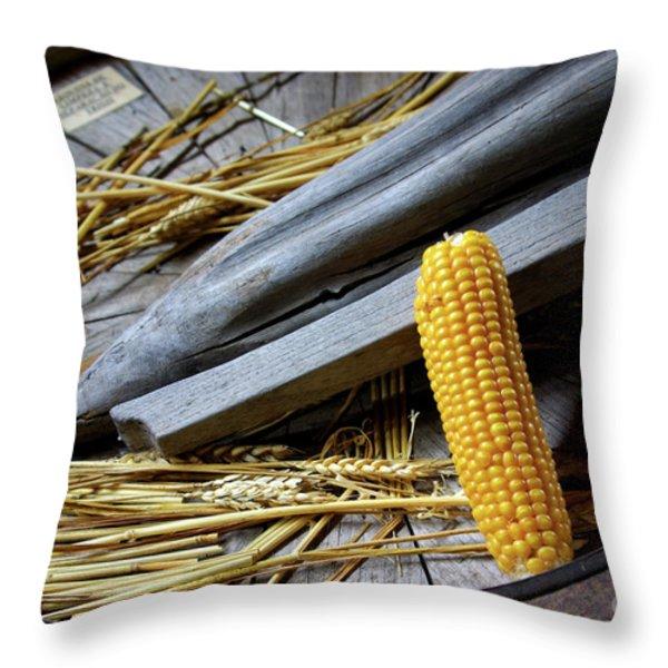 Corn Cob Throw Pillow by Carlos Caetano