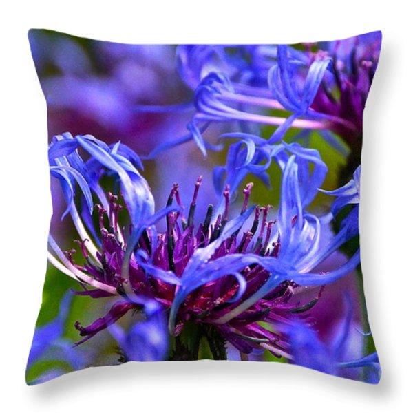 Cornflower Color Throw Pillow by Byron Varvarigos