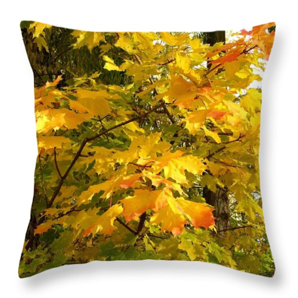Country Color 10 Throw Pillow by Will Borden