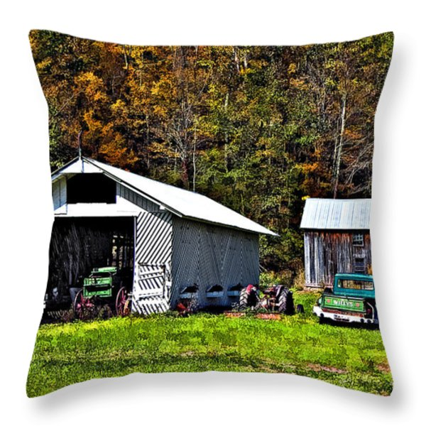 Country Life Throw Pillow by Steve Harrington