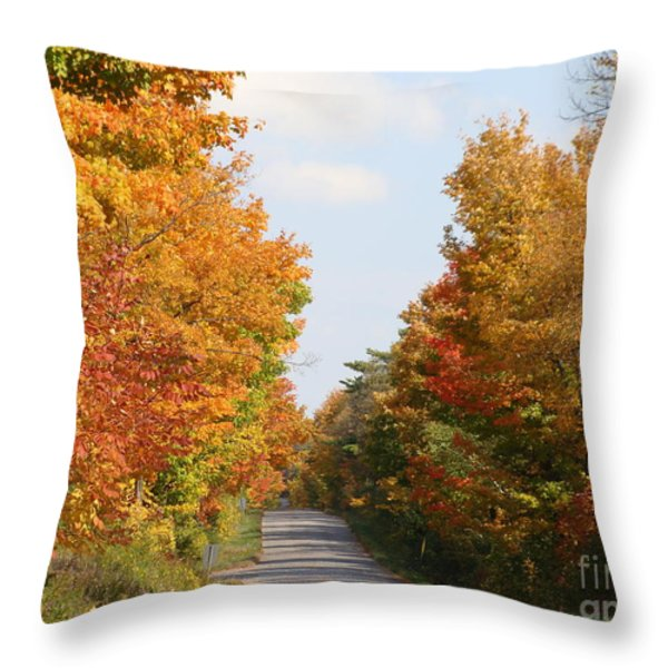 Country Road Throw Pillow by Beverly Livingstone
