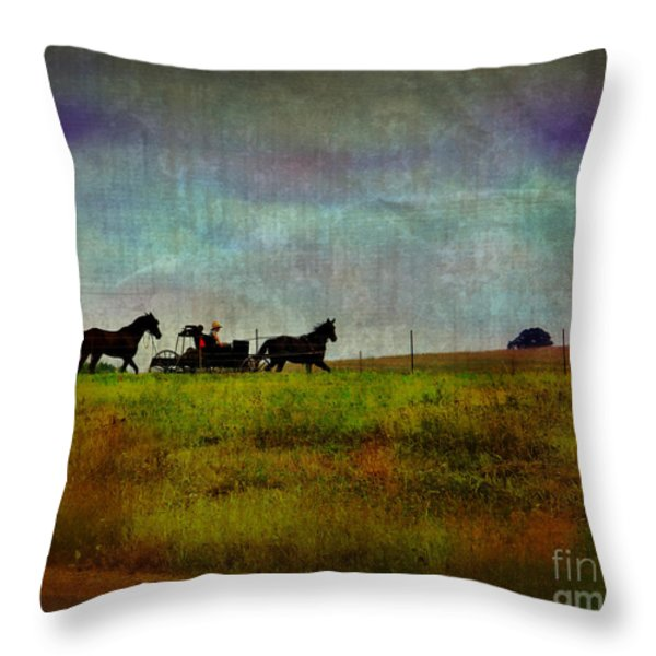 Country Wagon 2 Throw Pillow by Perry Webster
