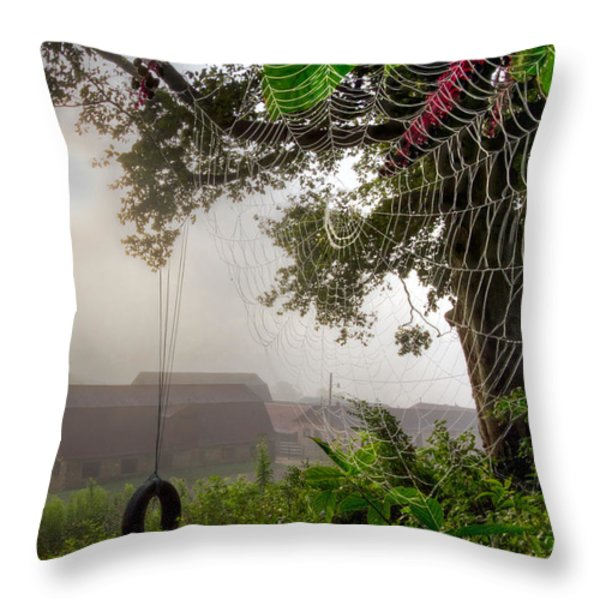 Country Wishes Throw Pillow by Debra and Dave Vanderlaan