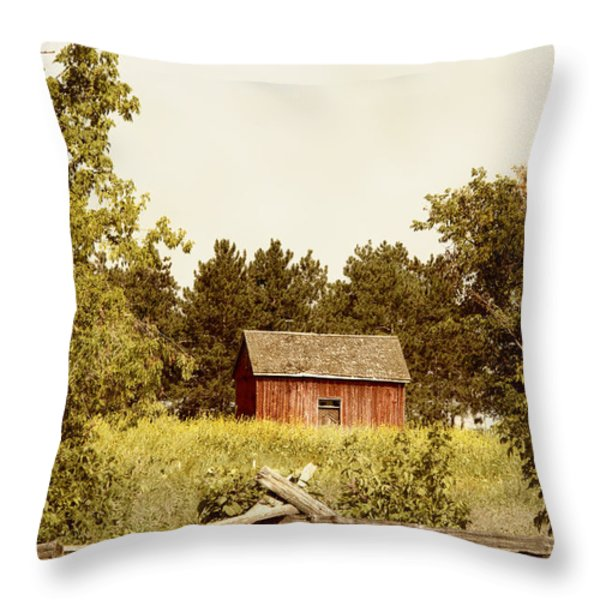 Countryside Throw Pillow by Margie Hurwich