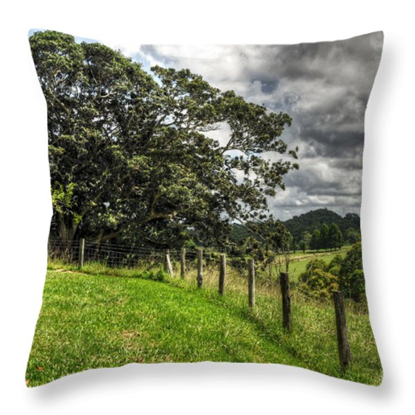 Countryside With Old Fig Tree Throw Pillow by Kaye Menner