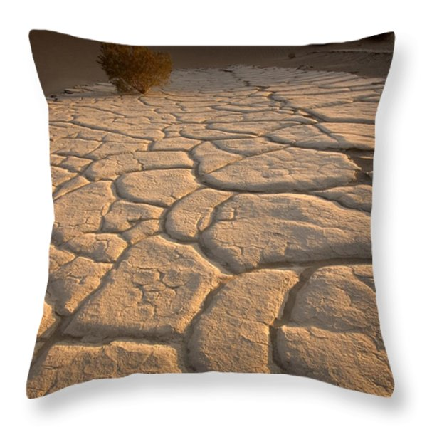 Cracked Mud Lies On Top Of The Sand Throw Pillow by Phil Schermeister