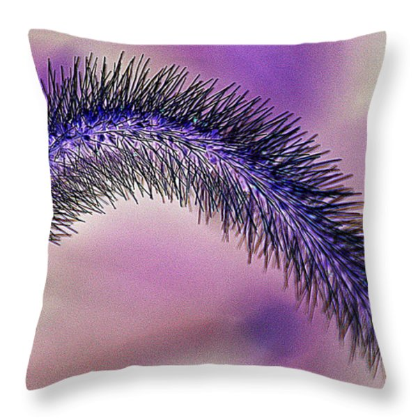 Crazy Foxtail 1 Throw Pillow by Marty Koch