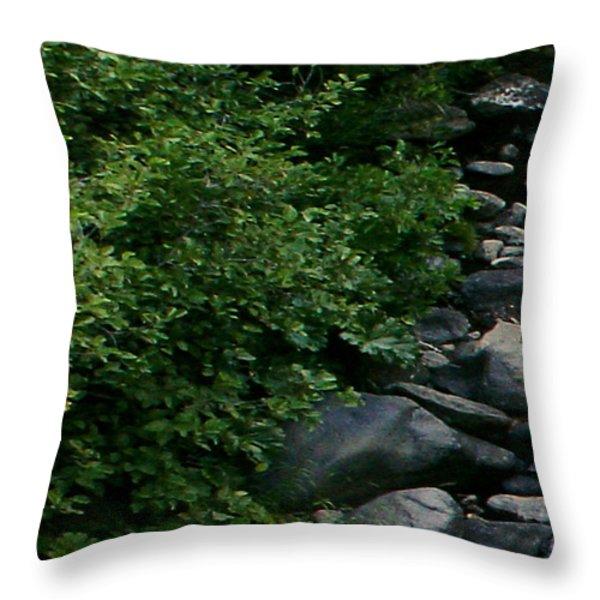 Creek Flow Panel 1 Throw Pillow by Peter Piatt
