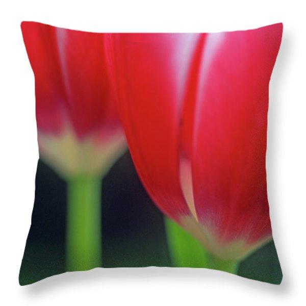 Crimson Tulips Throw Pillow by Kathy Yates