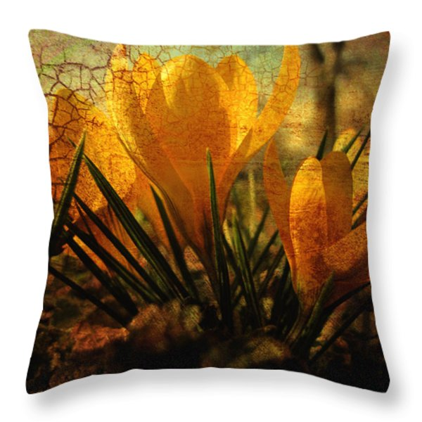 Crocus in Spring Bloom Throw Pillow by Ann Powell