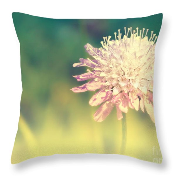 Cross Color Throw Pillow by Angela Doelling AD DESIGN Photo and PhotoArt