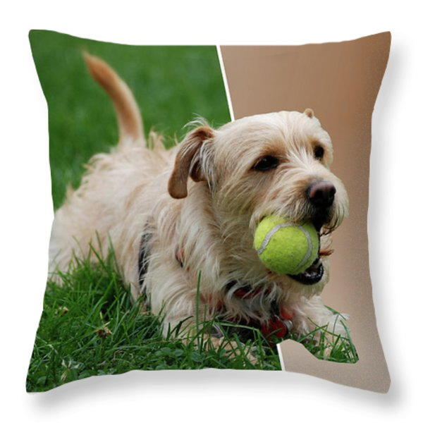 Cruz My Ball Throw Pillow by Thomas Woolworth