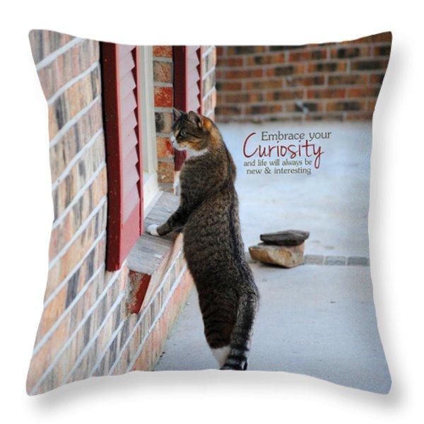 CURIOSITY Inspirational Cat Photograph Throw Pillow by Jai Johnson