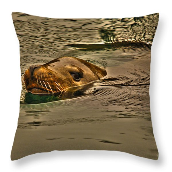Curious Throw Pillow by Cheryl Young