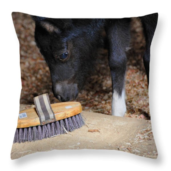 Curious Miniature Pony Throw Pillow by Jai Johnson