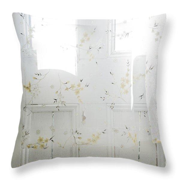 Curtain Throw Pillow by John Greim