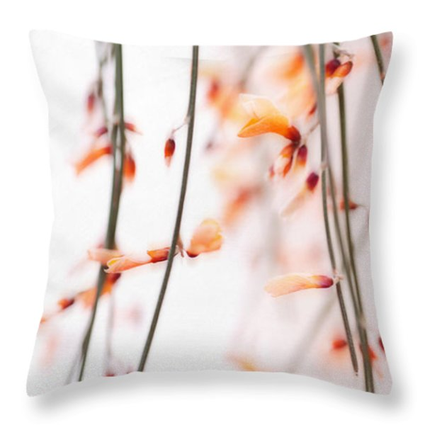 curtain Throw Pillow by Priska Wettstein