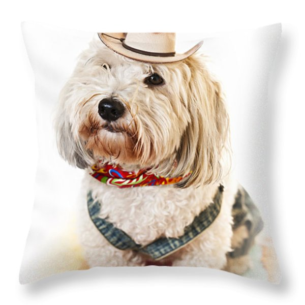 Cute dog in Halloween cowboy costume Throw Pillow by Elena Elisseeva