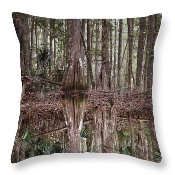 Cypress Hammock Throw Pillow by Joseph G Holland